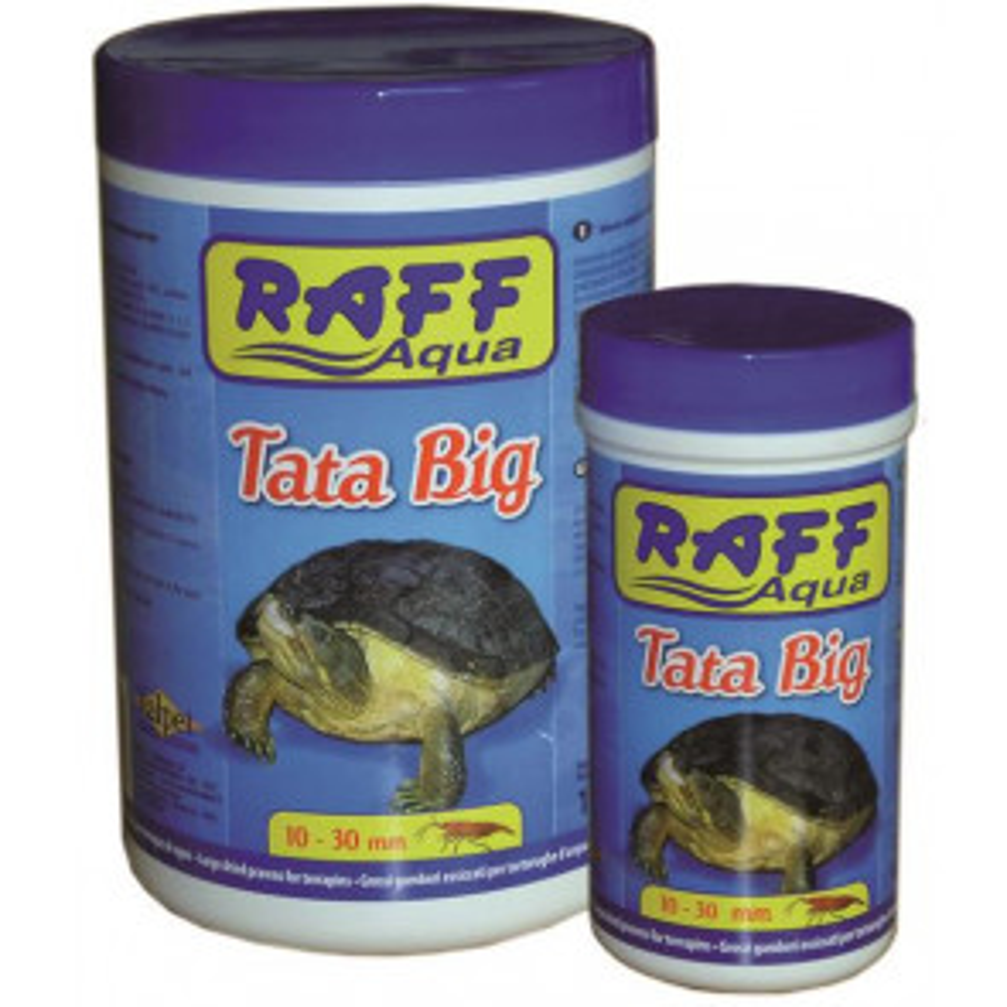 Raff Tata Big