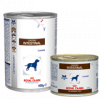 Royal Canin Gastro Intestinal Cane Lattina